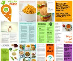 vegan lifestyle - examples of what you can eat